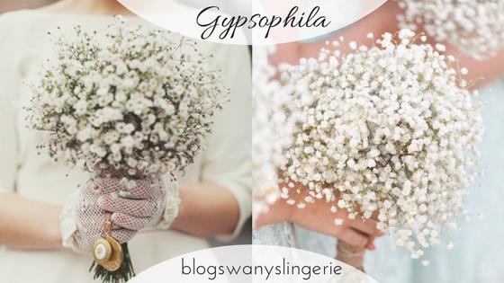 Buque Flor mosquitinho Gypsophila.png